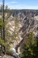 Yellowstone tours - Grand Canyon of the Yellowstone