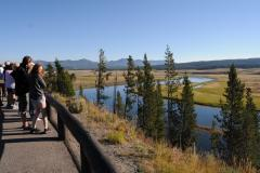 The Hayden Valley on a Yellowstone tour, on a bright summer's day.