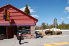 Yellowstone Internet Cafe