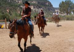 Zion horse riding