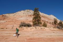 Zion tours from Las Vegas